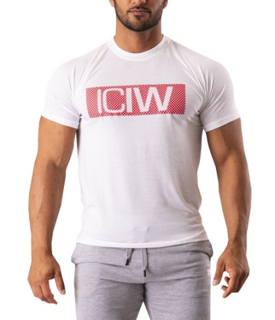 ICIW Block T-Shirt Men - ICANIWILL
