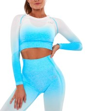 ICIW Ombre Seamless LS Crop Top